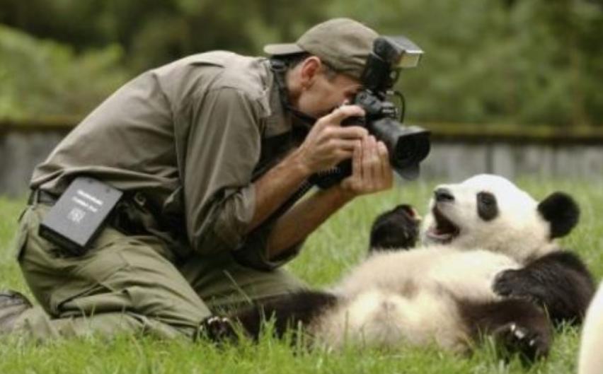 价值几千的职业摄影师教程